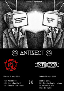 Antisect Gran Canaria Flyer